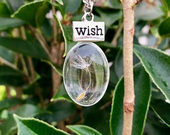 Flat Dandelion Wish Necklace - 1 seed