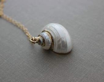 Gold Dipped Spiral Sea Shell Necklace - 14k gold filled Chain - Beachy Ocean Necklace - Gold plated Pearlized White Seashell necklace - boho