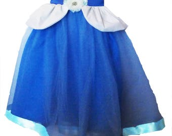 Cinderella Dress: Tutu Dress, blue & white, princess Birthday Party, princess dinner, sparkle, Easy on off, adjustable, halloween costume