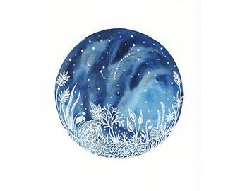 Fine Art Print // Scorpio & the Midnight Forest