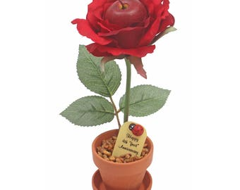 4th Anniversary gift - fruit rose