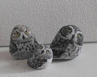 Hand Painted Stone Owl Feather Bird . set of 3 River rock Artwork. Home Garden Decor. 3D animal.