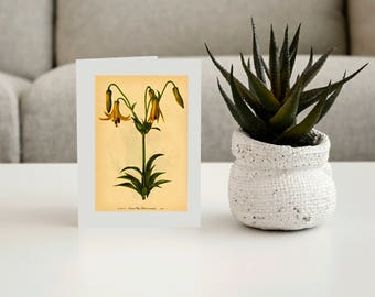 Vintage Flower Greeting Cards-Pkg of 6 Cards With Envelopes-Vintage Art Card-Any Occasion Card-Everyday Card-Collector Art Cards