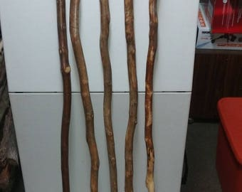 Maple Walking Sticks