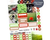 Mini Happy Planner Sticker Kit / St Patricks Day Sticker Kit / Mini Sticker Kit / Photo Sticker Kit / Planner Stickers / MS5