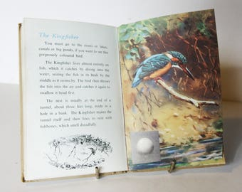 British Birds Ladybird book Nature First Edition Hardback 1954 Bird Spotting, with Illustrated Ornithology guide