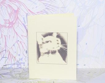 Cat card small mini gift tag blank note card handmade cat illustration x 2 dreamy wistful beautiful feline drawing