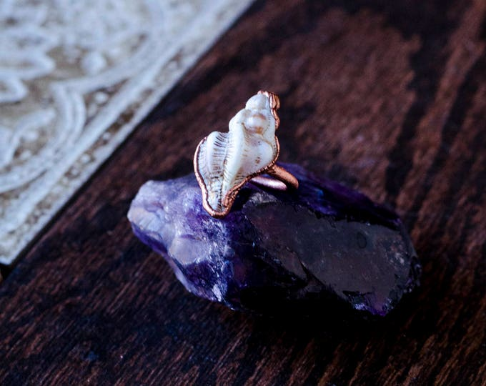 Only the Sea, Seashell Ring Size 6