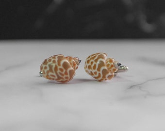 Natural Seashell Cufflinks