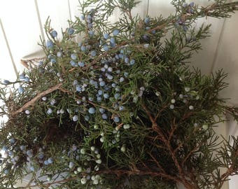 Winter wedding decor etsy 35 fresh juniper branches winter wedding decor christmas decorations holiday garland christmas wreaths holiday decor christmas junglespirit Choice Image