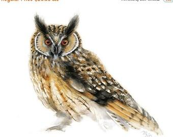 SALE Bird watercolor painting - Owl Art Print. Nature or Bird Illustration. Custard, Black and White