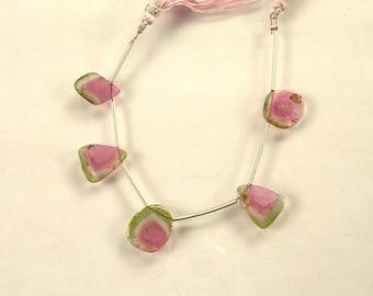 Watermelon tourmaline slice beads 12-14mm 17.7ct 5 pieces