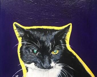 Pet Portrait with Plain Background