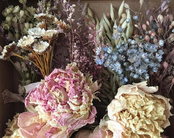 Bloomery Blend No. 0016: Mixed Dried Flower Bunches & Peony Flower Heads /  Blue - Yellow - Green - Aubergine