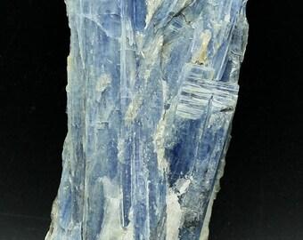 Vibrant blue Kyanite bladed crystals, Brazil.  Mineral Specimen for Sale Gem Crystals