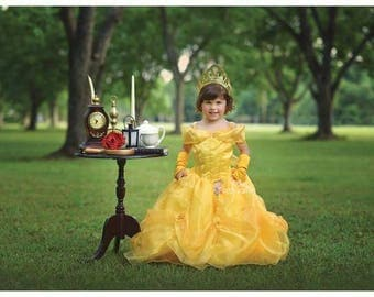 Belle dress for Birthday costume or Photo shoot Belle dress outfit Birthday dress Belle costume Princess dress for Birthday party