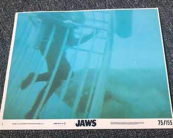 Two Vintage Original 1975 JAWS Small Lobby Cards! Roy Scheider! Robert Shaw! Richard Dreyfuss! Great White Shark! Steven Spielberg!
