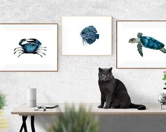 Ocean life print set, Nautical art set, Sea life prints, Nautical wall art