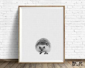 Hedgehog print Nursery art print Nursery prints Hedgehog art print Baby hedgehog wall print Peekaboo art Peekaboo nursery art Hedgehog photo