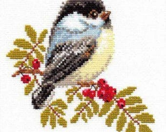 Embroidery/beginner/child 15 cross stitch Kit x 14 cm