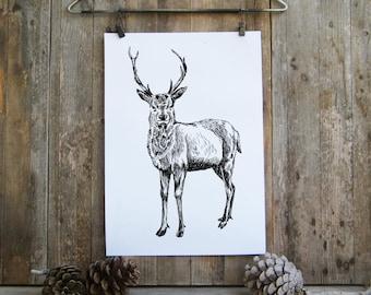 Deer Printable Art, Black And White Deer Poster, Woodland Animals, Printable Cabin Decor, Deer Decor, Rustic Decor, Gift Under 10