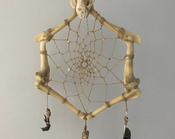 Dream catcher FabulouSkeletonS with real bronze jacana skull and animal skull