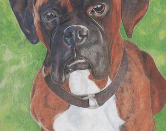 "9"" x 12"" Custom Pet Portrait"