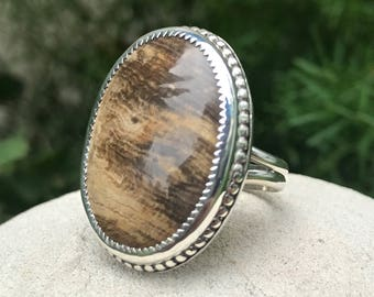 Petrified Wood Sterling Silver Ring