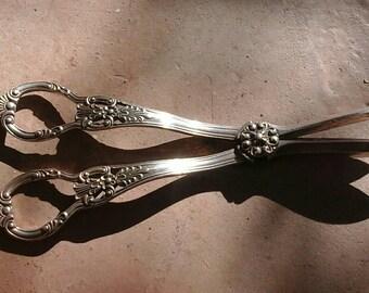 Rare grapes 19th century silver metal scissors. Scissors collection.