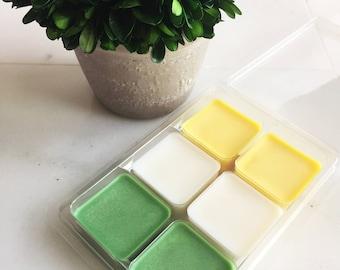 Vanilla Mint Soy Wax Melt // Scented Wax Melts // Soy Candles // Wax Tarts // Clamshell Melts //  Soy Tarts // Large Wax Melts 4.7 oz