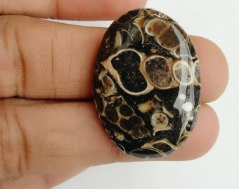 Warm sell 33.5ct Turritella Agate Natural Gemstone Super Quality AAA+++  Cabochon , Smooth, Oval Shape, 31x23x5mm Size, AM175