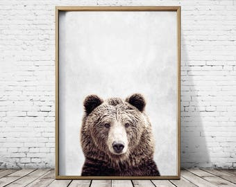 Bear Art Bear Poster Wall Art Print Animal Print Bear Print