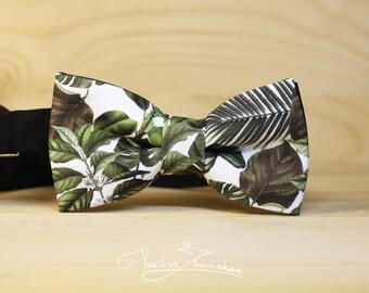 Bow tie - Bowtie tropics