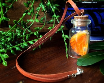 Butterfly Wing Jar Necklace // Curiosity Jar // Corked Bottle Pendant