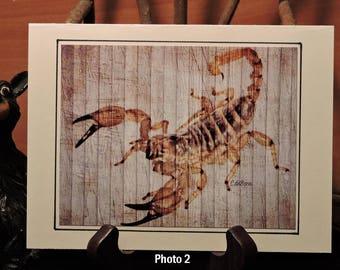 Artistic Card Set / Scorpions