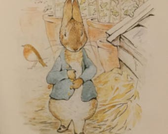 Beatrix Potter Book -The Tale of Peter Rabbit