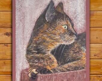 ORIGINAL pastel drawing . Calico cat ( three colored cat)