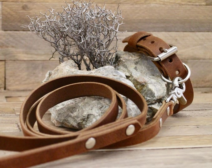 Leather dog collar, Dog leash, Set collar and leash, FREE ID TAG, Cowboy brown, Handmade leather collar, Silver hardware, Leather leash.