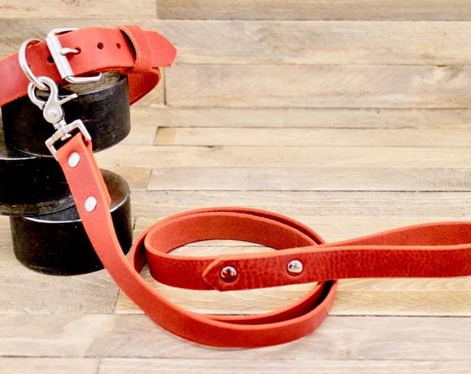 Collar and leash, Set, Free id tag, Cayenne color, Handmade leather collar, Silver hardware, FREE ID TAG, Leather leash, Collar, Leather
