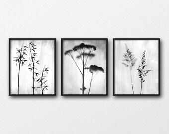 Best Selling Item, Black and White Prints, Botanical Prints, Set of 3 Prints, Scandinavian Prints, Minimalist Flower Prints, Botanical Photo