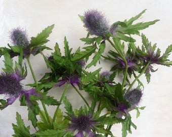 Artificial sea holly thistle flower purple