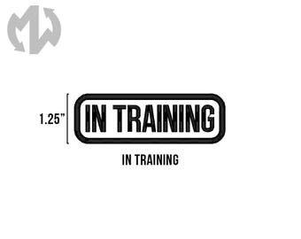 """IN TRAINING 1"""" tall Service Dog Patch"""