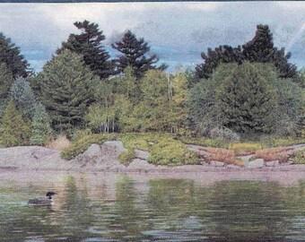 LAKE SCENE Outdoors  Wallpaper Border 76354 GL