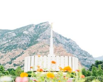 Provo Utah Temple 10