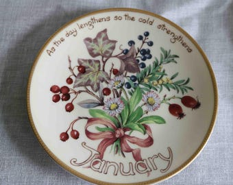 The Country Diary of an Edwardian Lady Limited Edition Plate  'January'  Bradex Davenport  Excellent condition