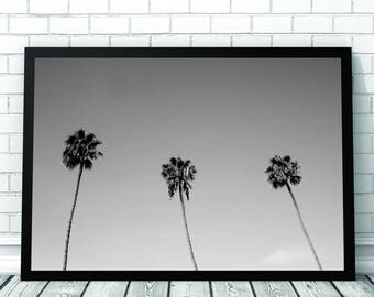 Palm Tree Art Print, Palm Tree Print, Palm Tree Photo, Beach, Monochrome Photo,  Printable Digital Download, Photography