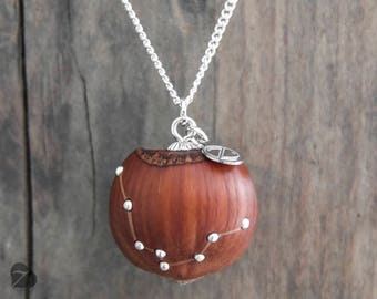 Aquarius zodiac sign necklace / Wooden hazelnut necklace / real hazelnut / fairy tale jewellery / nature lover gift / star sign / engraved