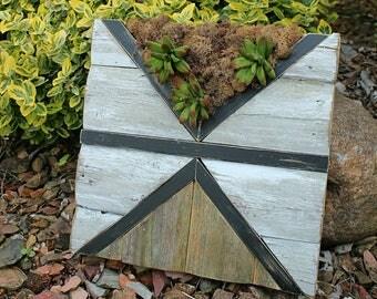 FOCAL POINT / reclaimed wood art / succulents /boho style / farmhouse // pallet wood / custom handmade / black and white / ready to ship