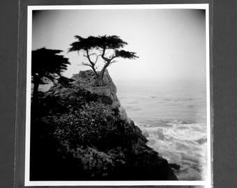 "Fine Art Photography ""Lone Cypress"" Archival Print"