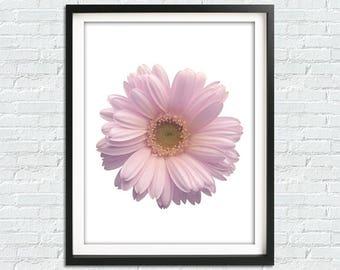 Daisy Print, Daisy Art, Botanical Prints, Nursery Wall Art, Lilac Wall Prints, Flower Print, Flower Wall Art, Bathroom Print, Daisy Wall Art